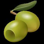 ثمرة الزيتون الأخضر رمز