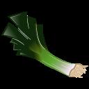 Leek icon