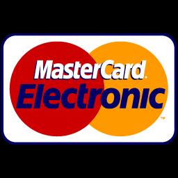 Master Card Electronic icon
