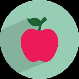 apple 2 icon