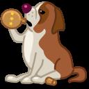 dog saint bernard icon