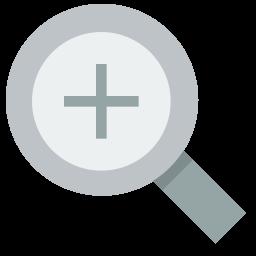 magnify icon