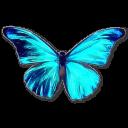 Rhetenor Morpho icon